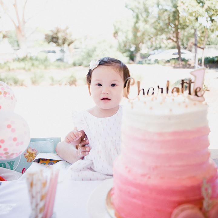 Charlotte 1st Birthday Party